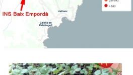 mapa_vigilantes_del_aire-540x895